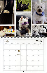 2017 Calendars to Support Oklahoma Westie Rescue - click to see more