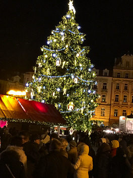 Christmas Market Tree in Prague -- click to enlarge